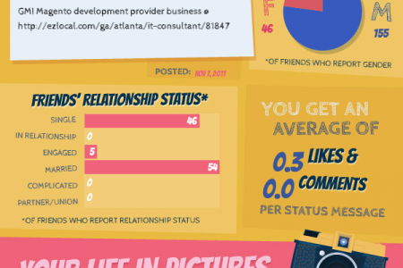 Social Networking Website Development India  Infographic