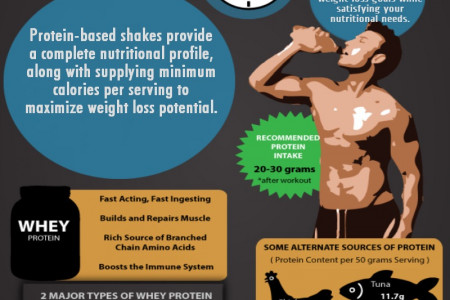 Special Protein for Muscular Body Infographic