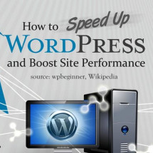 Speed Up WordPress Infographic