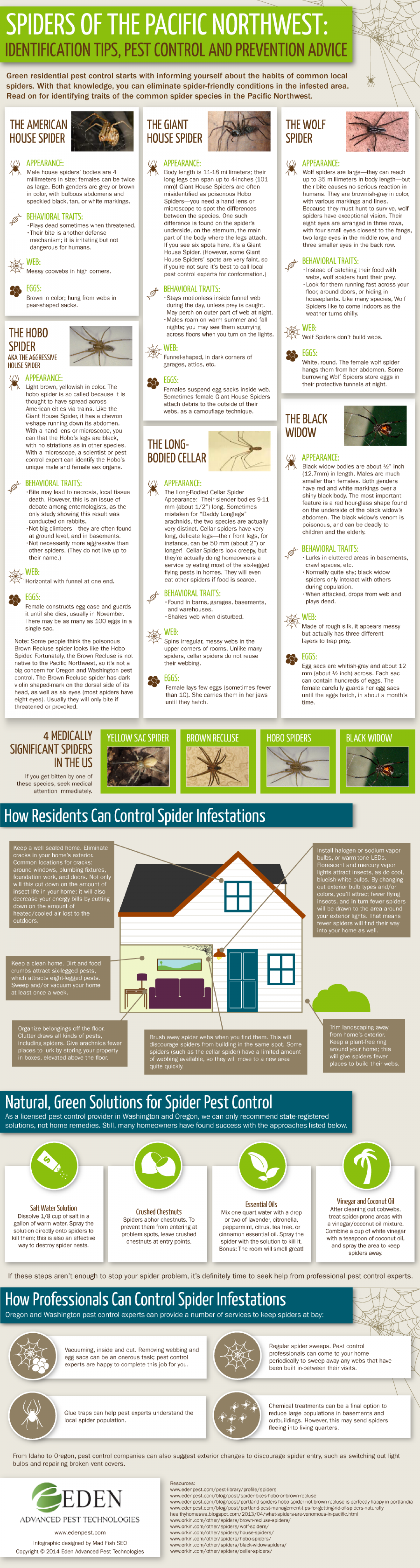 Spiders of the Pacific Northwest: Identification Tips, Pest Control and Prevention Advice Infographic