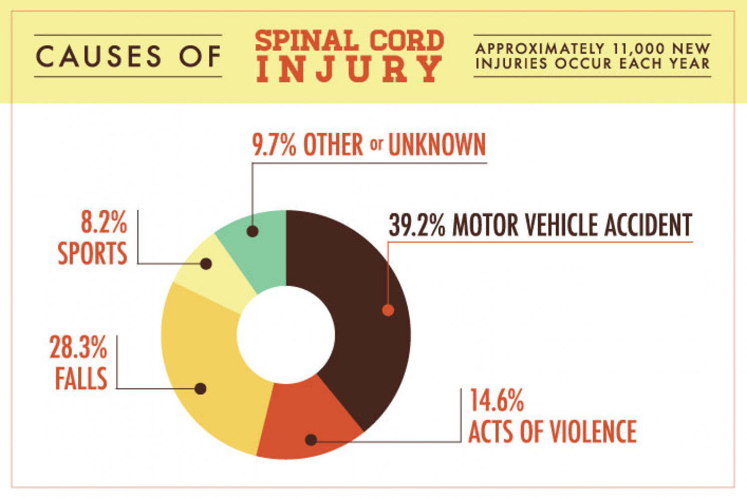 Spinal Cord Injury Infographic