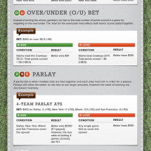 Sports Betting 101 Infographic