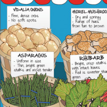 Spring Produce: Your Guide to Picking the Best Infographic