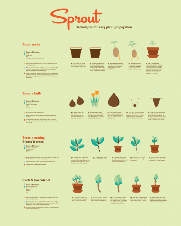 Sprout Infographic