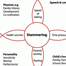 Stammering Framework Infographic