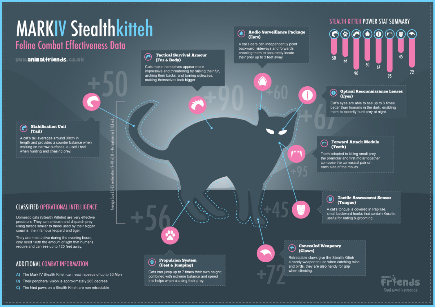 Stealth Kitteh Infographic