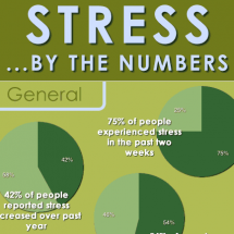 Stress... By The Numbers Infographic