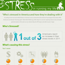 Stress' Effects By the Numbers Infographic