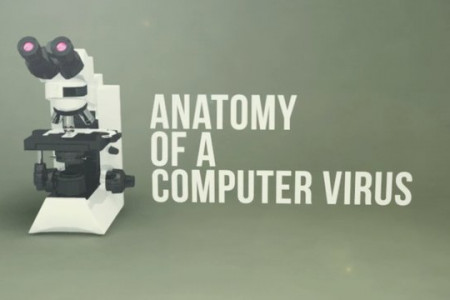 Stuxnet: Anatomy of a Computer Virus Infographic
