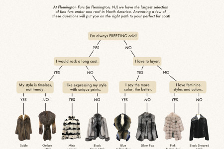 Style Map To Your Perfect Fur Coat Infographic