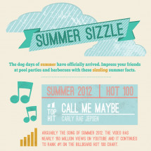 Summer Fun Time Infographic
