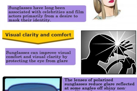 Sunglasses Overview Infographic