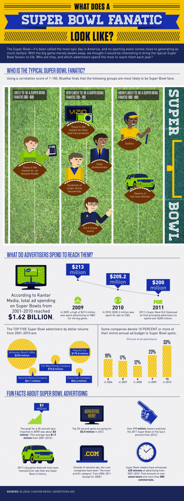 Super Bowl Fanatic Infographic