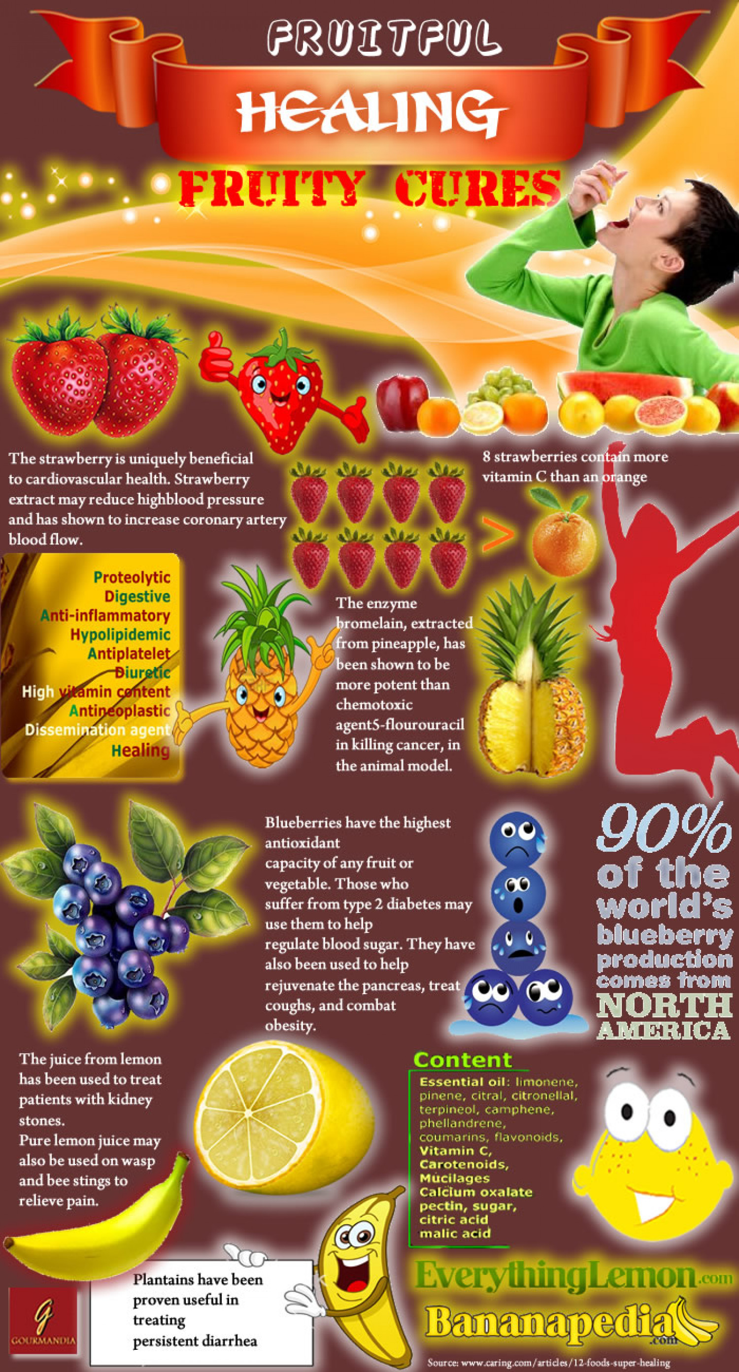 Super Healing Foods Infographic