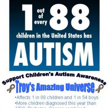 Support Children's Autism Infographic