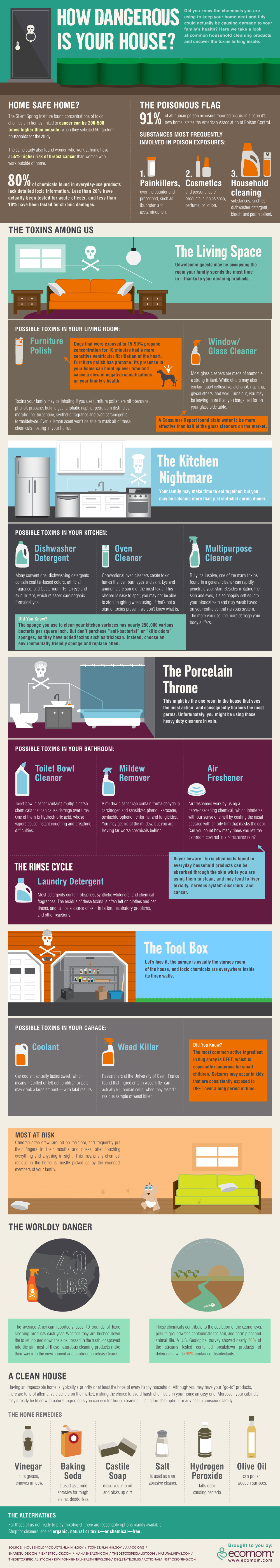 How Dangerous is Your House Infographic
