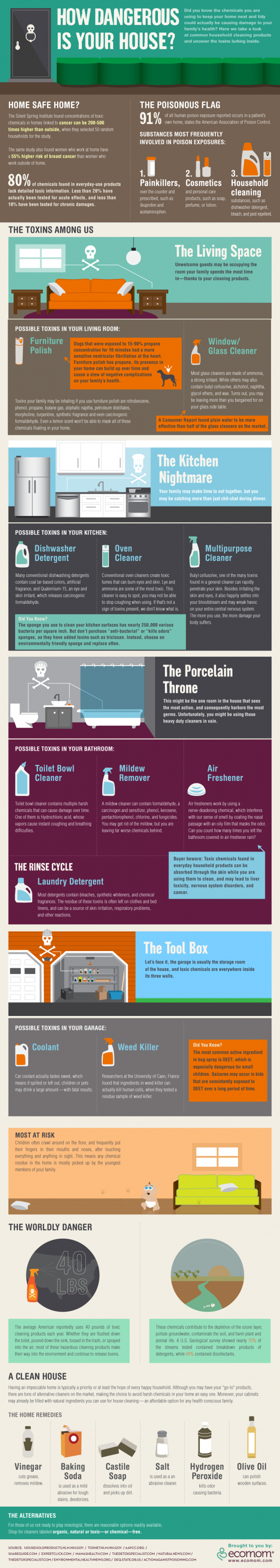 Surprise Toxins In Your Home Infographic