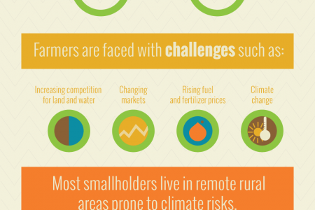 Sustainable Farming Infographic