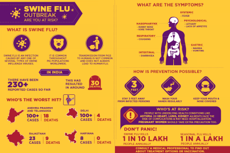 Swine Flu Outbreak - Are you at risk? Infographic