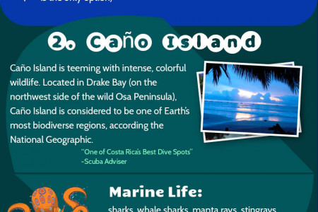 Taking the Plunge! Best Dive Spots of Costa Rica Infographic