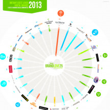 Tamar #BrandLove25 Infographic 2013  Infographic