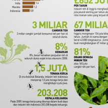 Tea for Health Infographic