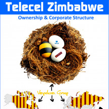 Telecel Zimbabwe Ownership Infographic