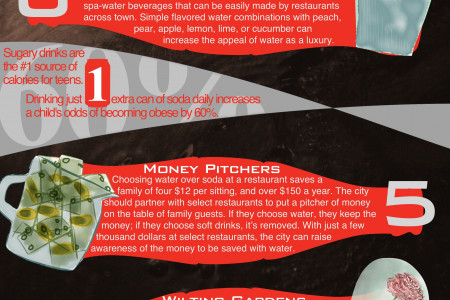 Ten Ideas to Fight Soda in NYC Infographic