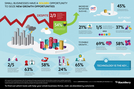 Small Businesses Have a Golden Opportunity to Seize New Growth Opportunities Infographic