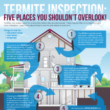 Termite Inspection: Five Places You Shouldn't Overlook! Infographic