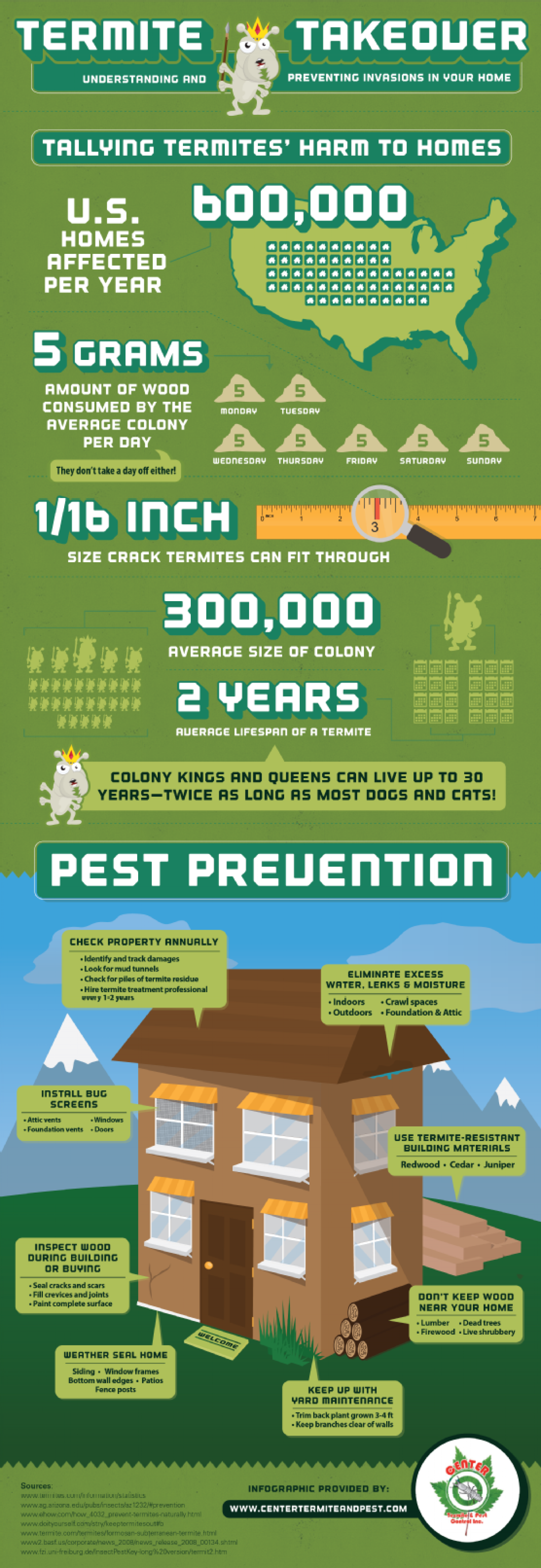 Termite Takeover: Understanding and Preventing Invasions in Your Home Infographic