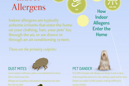 Texas Allergies Infographic Infographic