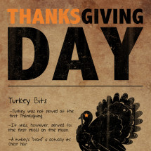 Thanksgiving Day Infographic