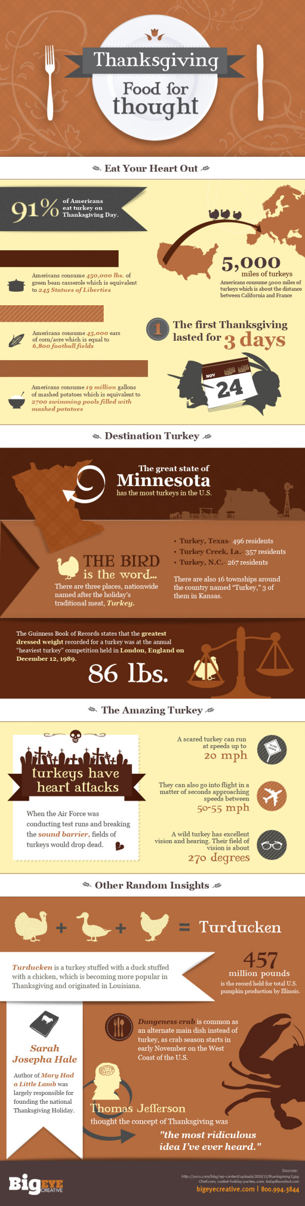 Thanksgiving Food For Thought  Infographic