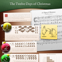 The 12 Days of Christmas  Infographic