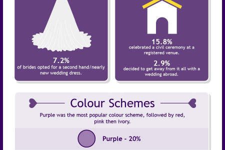 The 2013 Hitched Wedding Survey Ireland Infographic