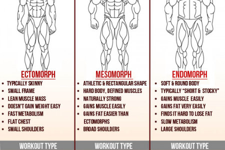 The 3 Body Types Infographic