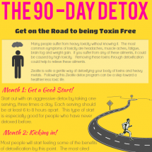 The 90-Day Detox Infographic