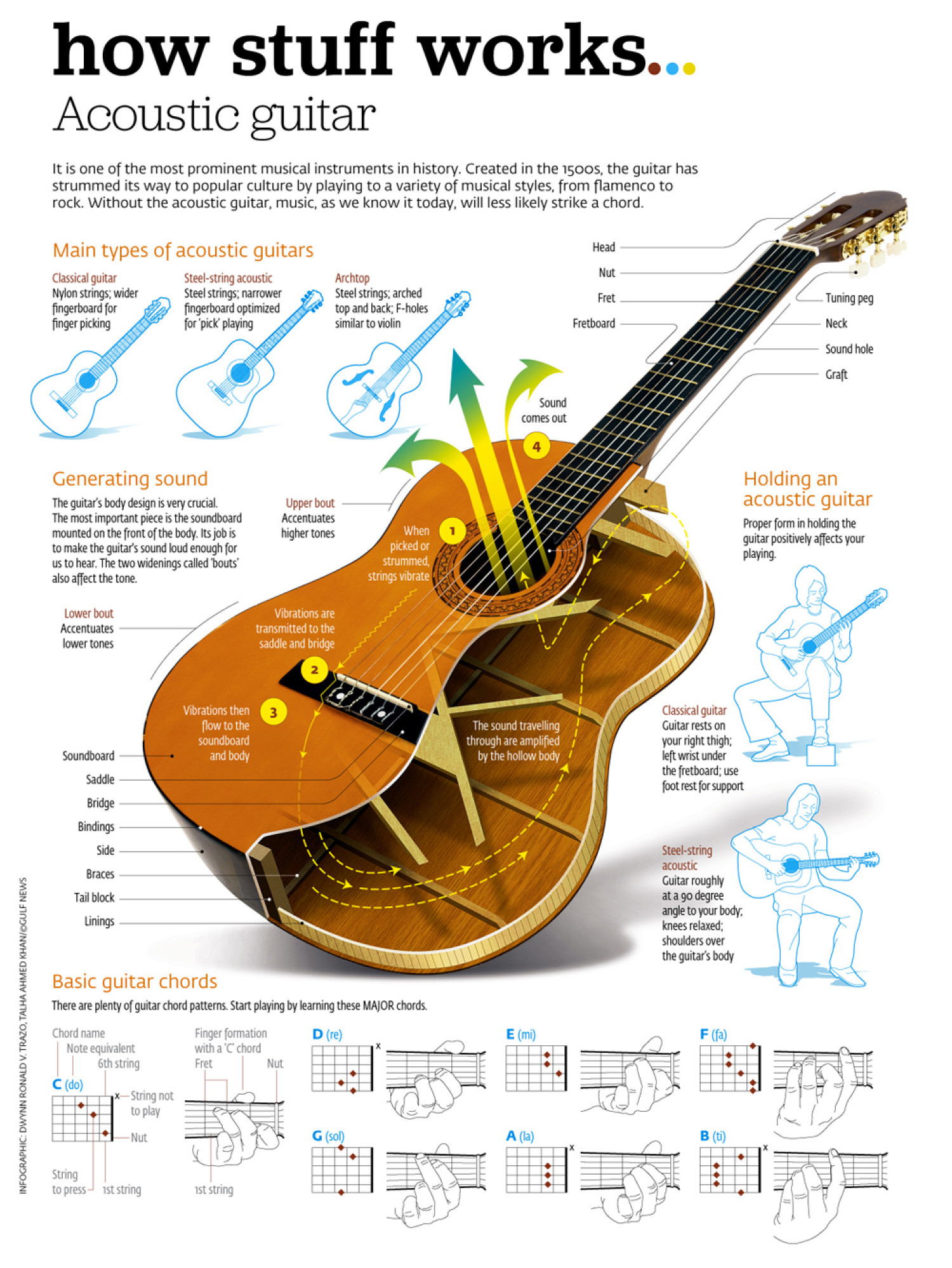 Infographic - The Acoustic Guitar