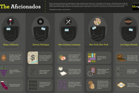 The Aficionados Infographic