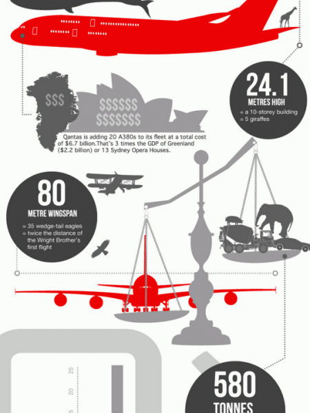 The Airbus A380: A Bug Plane Infographic