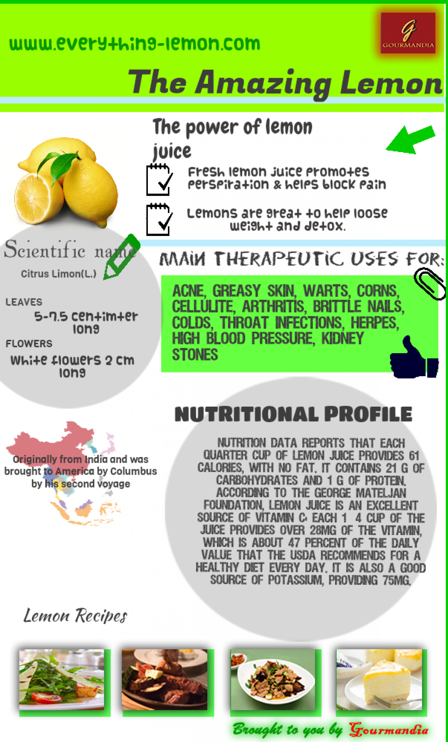 The Amazing Lemon Infographic