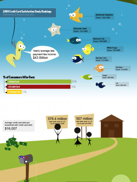 The American Credit Card Craze Infographic