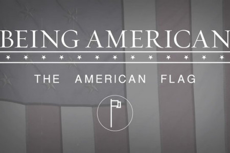 The American Flag Infographic