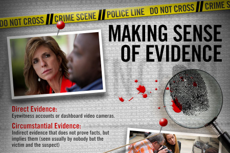 The Anatomy of a Crime Scene Infographic