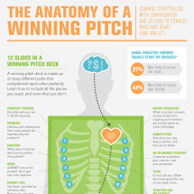 The Anatomy of a Winning Pitch Infographic