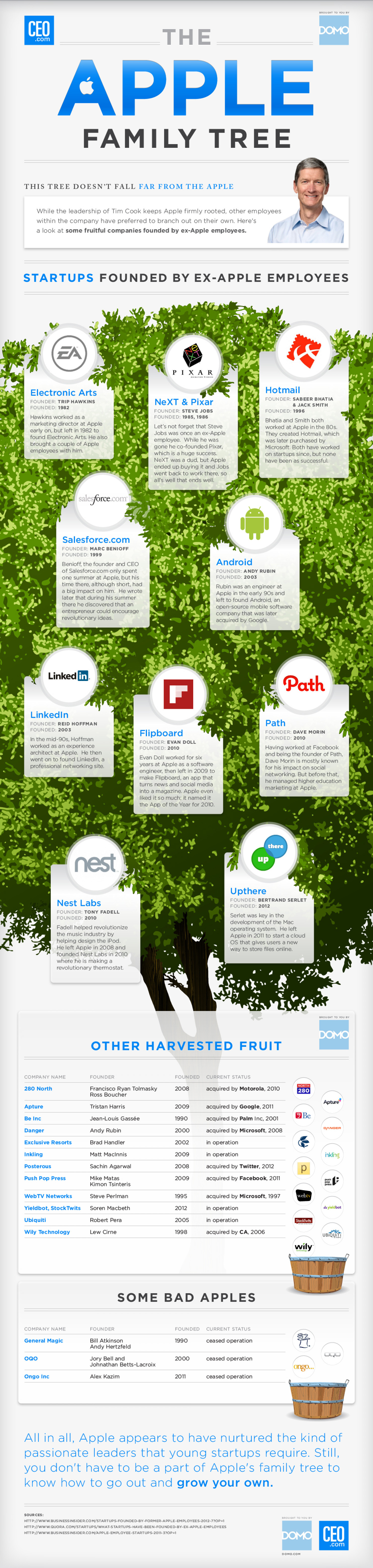 The Apple Family Tree Infographic