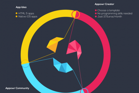 The Appowr Process Infographic