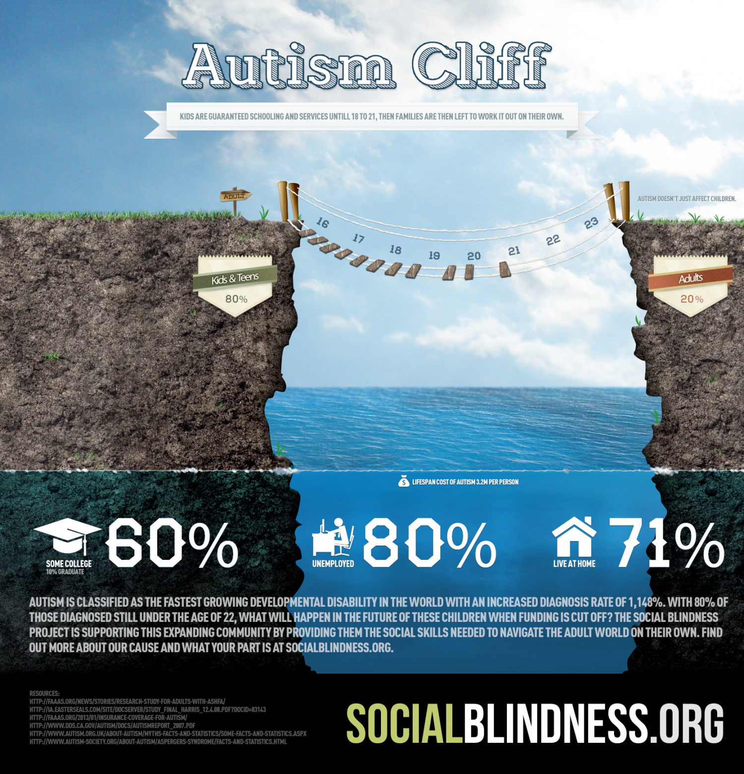 The Autism Cliff Infographic