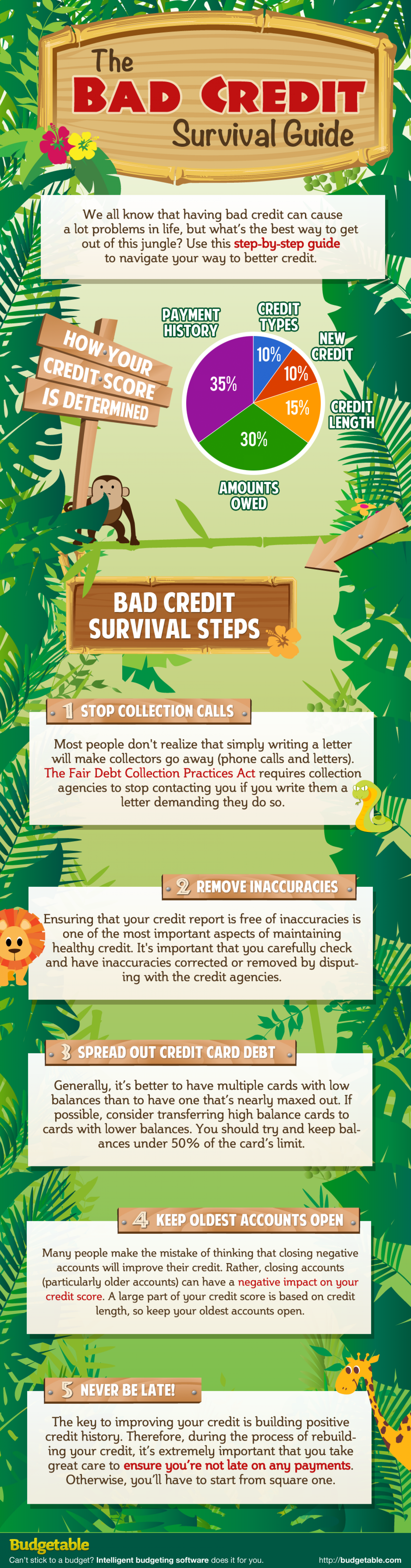 The Bad Credit Survival Guide Infographic